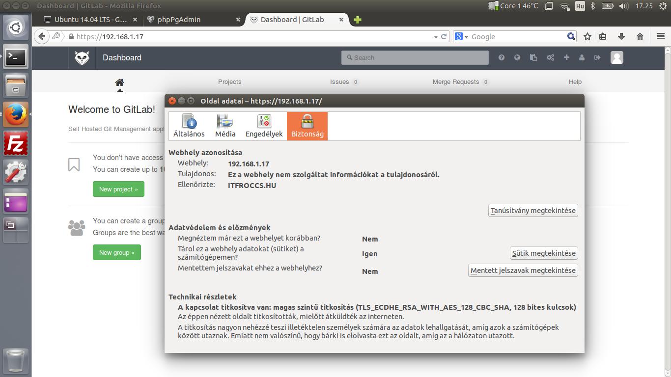 Ubuntu 14.04 LTS - Git - GitLab - HTTPS